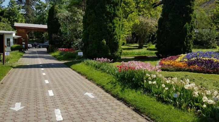 Grădina Botanică Al. Borza
