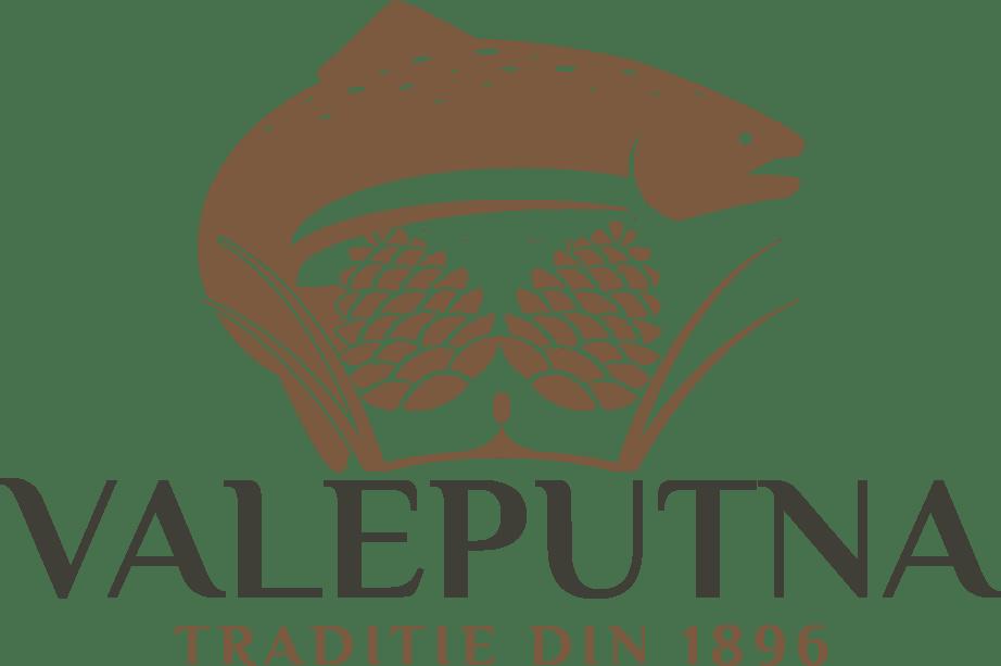 valeputna logo PNG