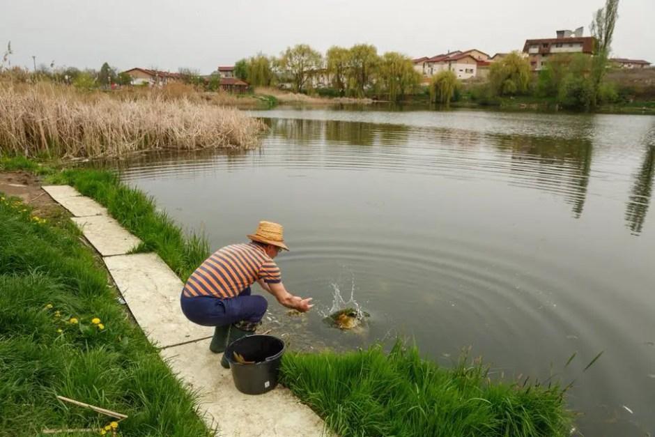 pescuit lac gheorgheni