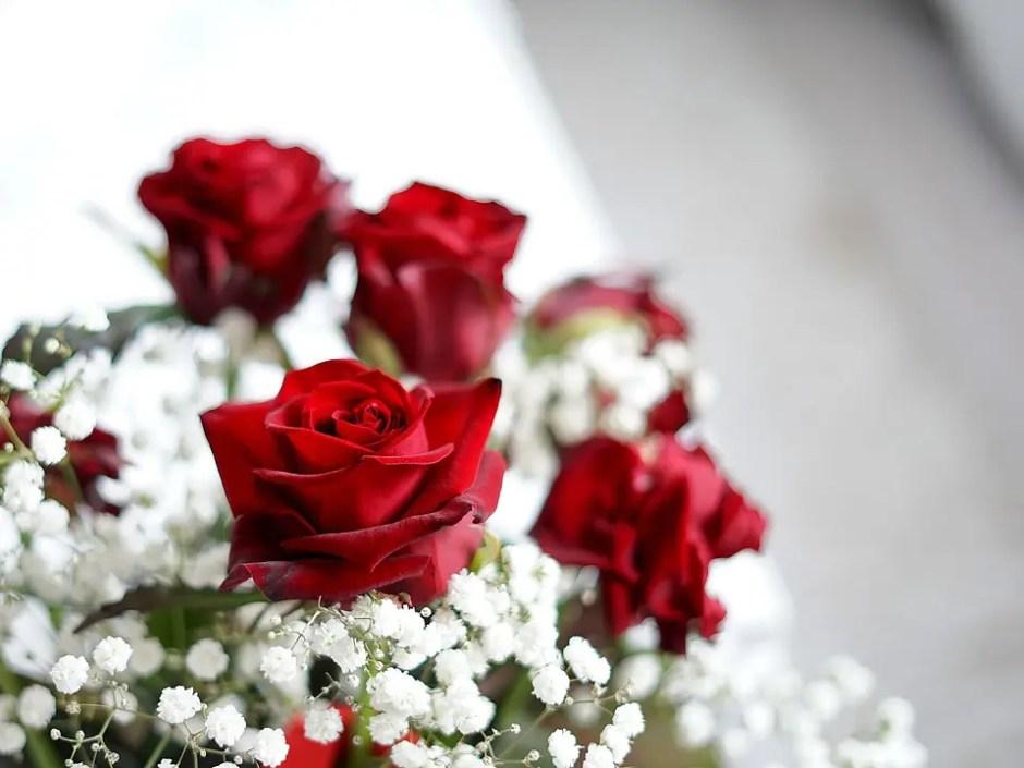 Buchete de trandafiri albi sau rosii? Afla ce semnificatii au acestea in limbajul florilor