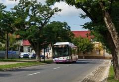 Municipiul Cluj-Napoca a primit Premiul pentru Eficiență Energetică pentru introducerea autobuzelor electrice în transportul public
