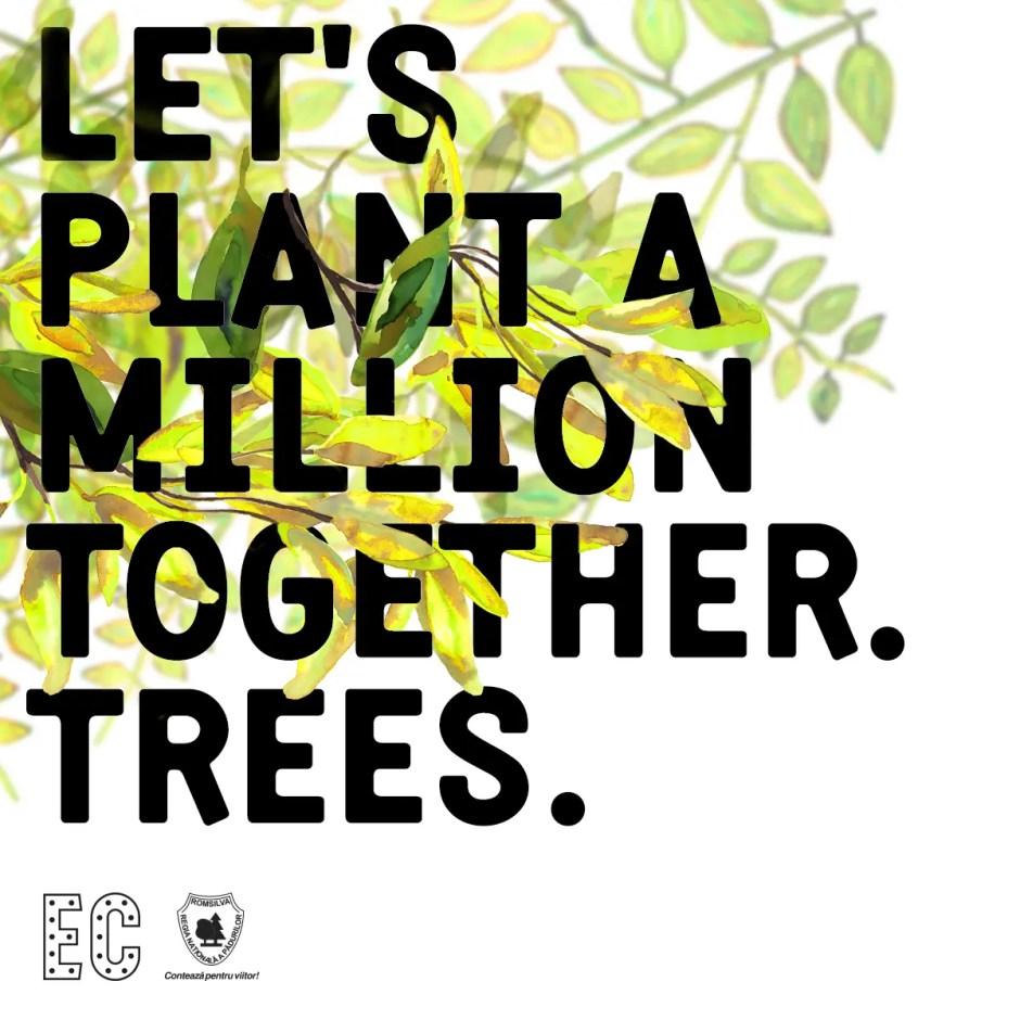 Organizatorii Electric Castle vor să planteze 1 milion de copaci! Fanii festivalului sunt aşteptaţi să se alăture campaniei de împădurire