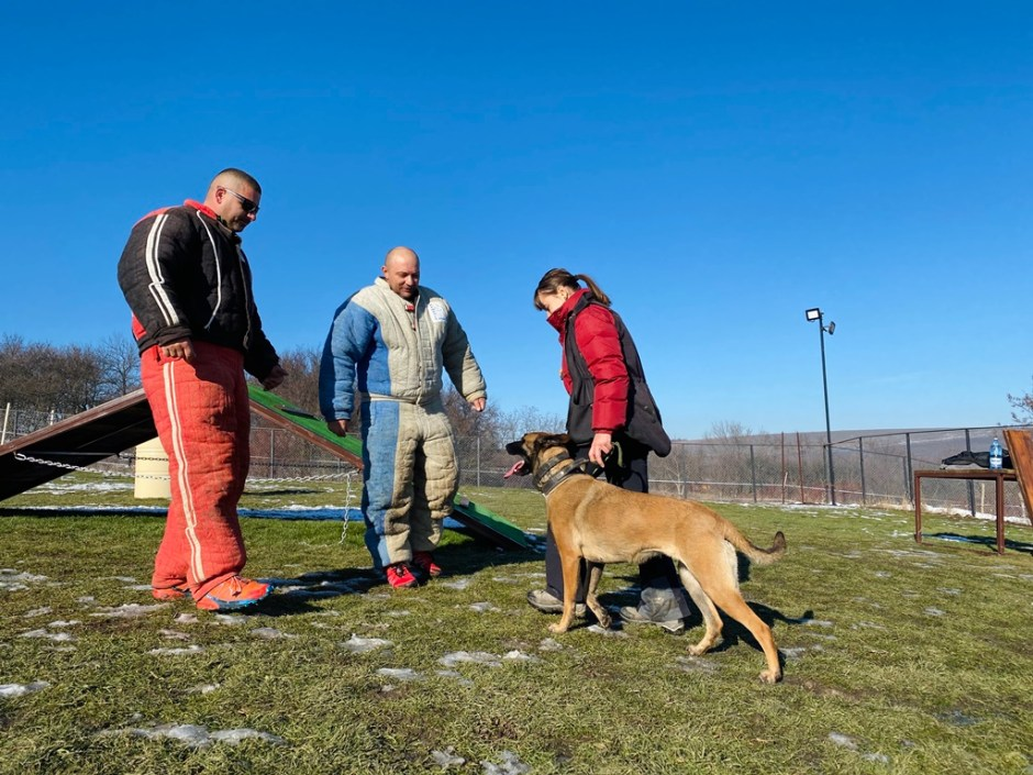 S-a deschis cel mai nou club de dresaj canin din Cluj: K9 Club Ham Ham