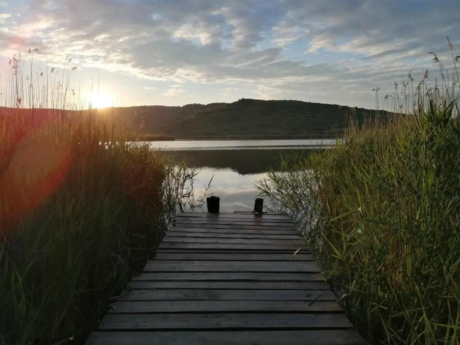 lacul stiucilor sacalaia