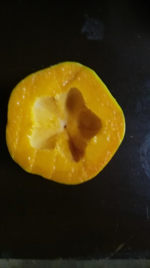 Star Papaya