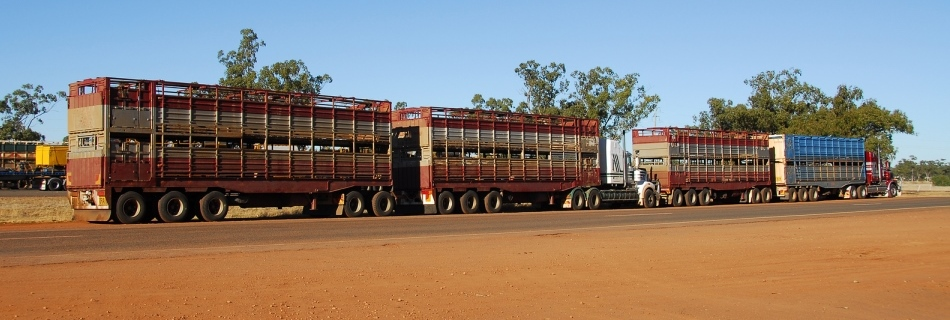 bigstock-Road-Train-In-Australia.v2