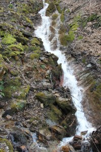 cascade dans les Ardennes 2