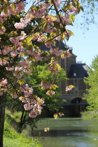 charleville printemps