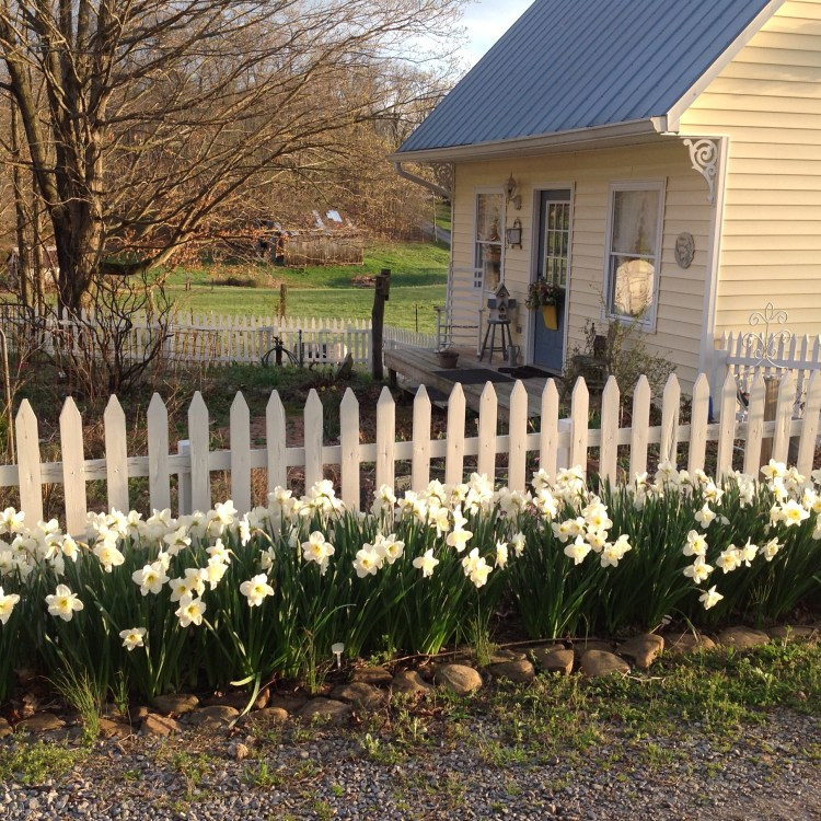 Organize your home for spring