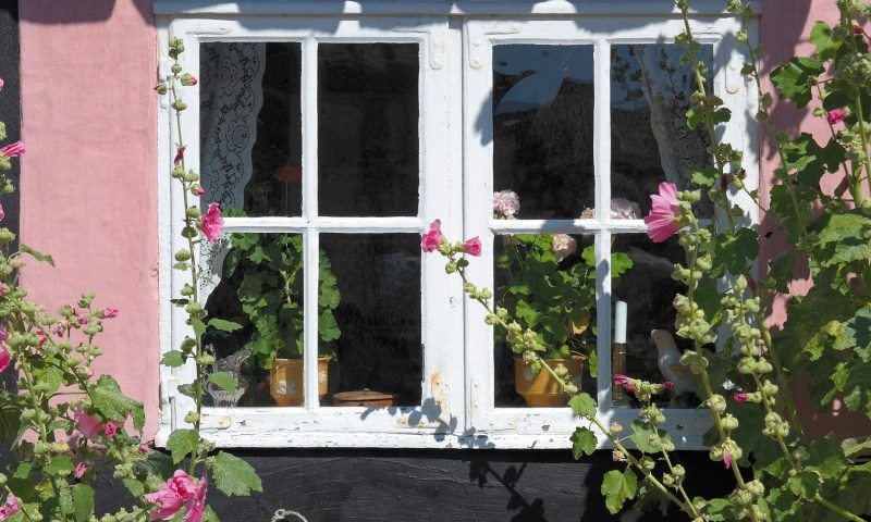 Window with spring flowers