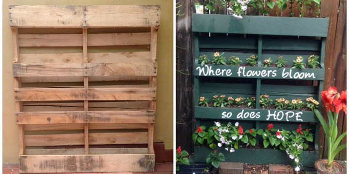 Grow Plants Using Pallets - Vertical Garden With Pallets