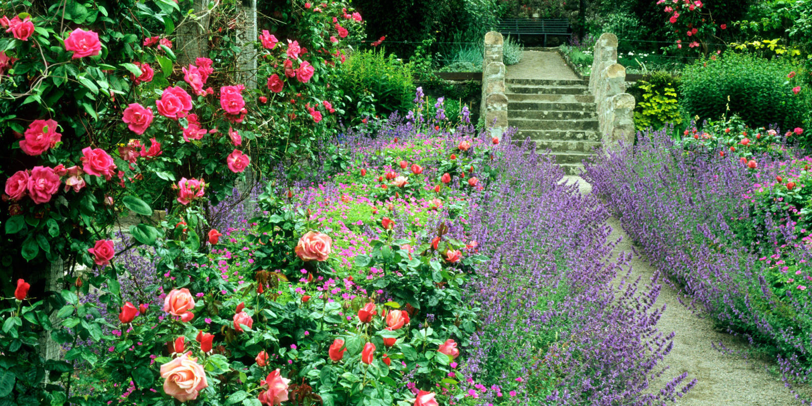 9 Cottage Style Garden Ideas - Gardening Ideas on Cottage Patio Ideas id=23577