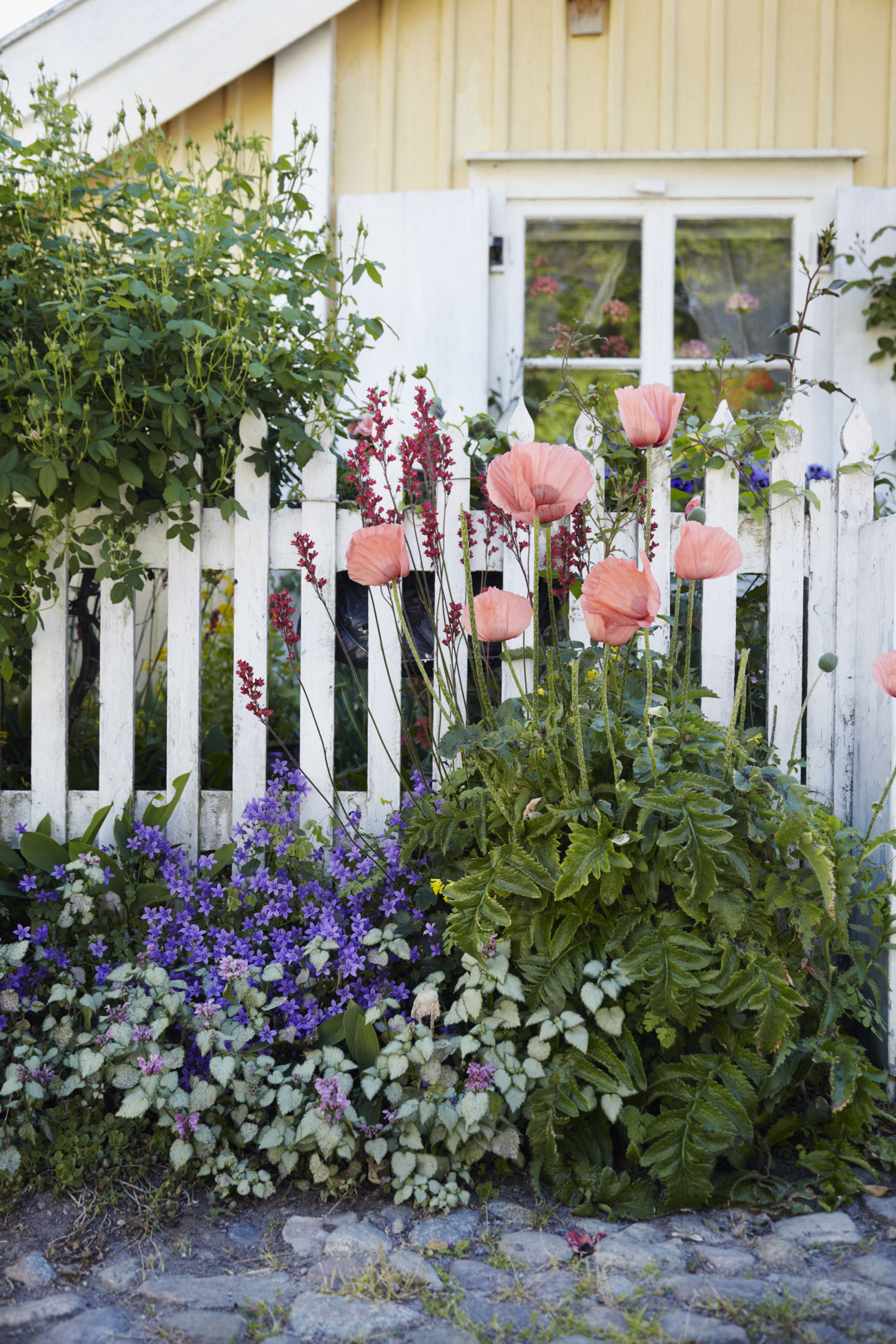 Home Gardening Advice - How to Create a Beautiful Yard on Gardening  id=64021