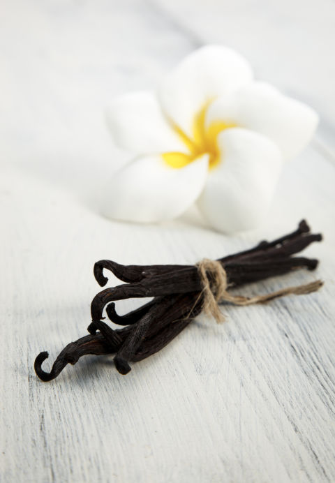 """One of the most universal appealing and calming scents is vanilla,"" says Rachel Herz, expert in the psychological science of scent, neuroscientist, and author of The Scent of Desire . ""It's one of the aromatics in breast milk and in baby formula, and we associate it with being nurtured. For most everyone, it carries a positive, soothing feeling."""