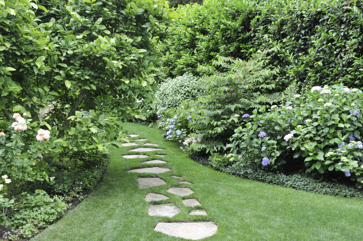 12 Cheap Landscaping Ideas - Budget-Friendly Landscape ... on Patio And Grass Garden Ideas id=93309