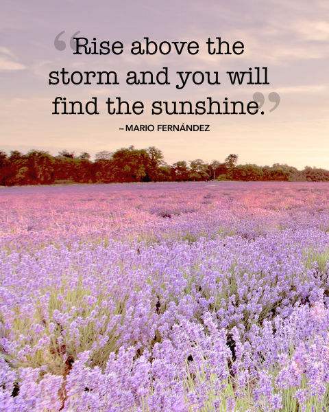 """""""Rise above the storm and you will find the sunshine."""""""