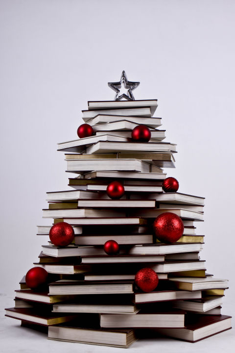 Image result for books under christmas tree