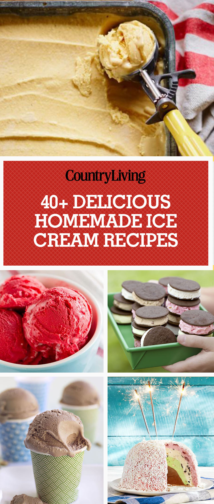 42 Easy Homemade Ice Cream Recipes How To Make Ice Cream