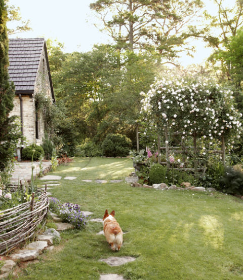 Blue, the designer's Welsh Corgi, sets off toward an arbor covered in 'New Dawn' roses.