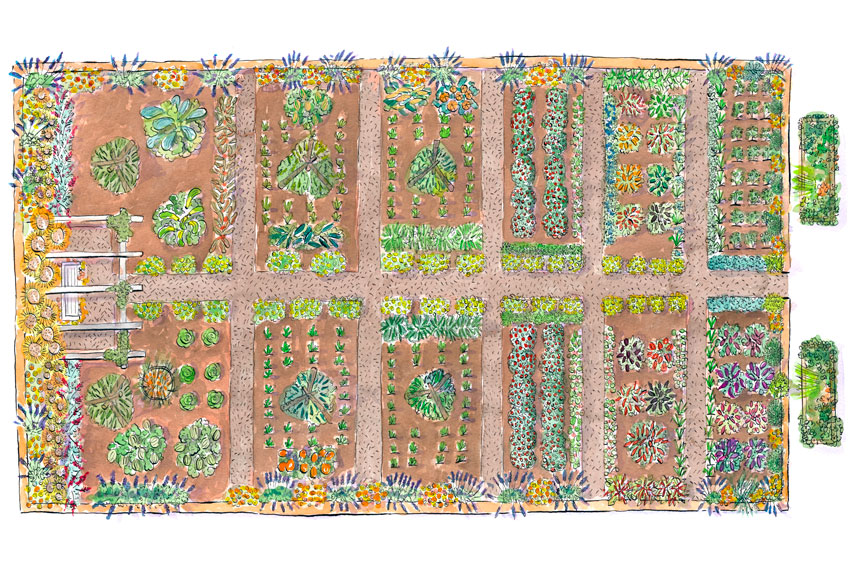 Small Vegetable Garden Design Ideas - How to Plan a Garden on Backyard Layout Planner id=62159