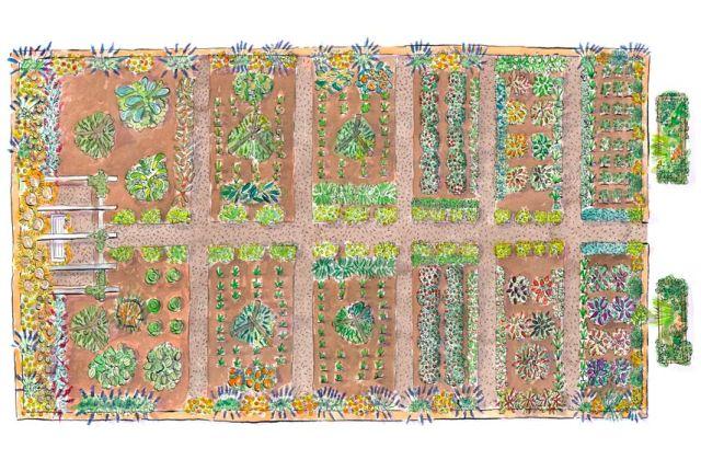 Free Garden Plans - Garden Design Ideas on Patio Planner id=59773