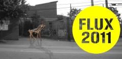 flux-2011-flyer-zebra-2-650x314