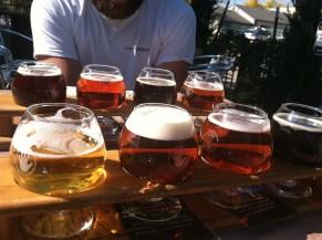 Lefthand brewery!
