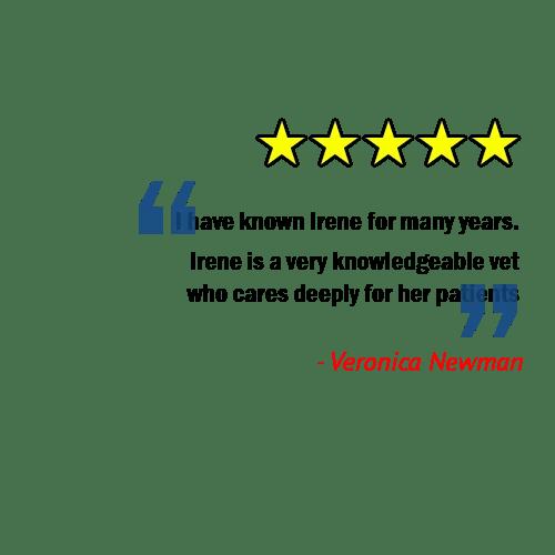 client patient veterinary review