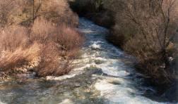 Categoria II - Água Doce - 2º Classificado - Nataniel Evangelista Cleto Lopes da Rosa