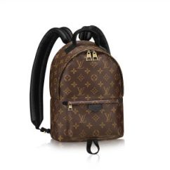louis-vuitton-sac-à-dos-palm-springs-pm-toile-monogram-sacs-à-main--M41560_PM2_Front view