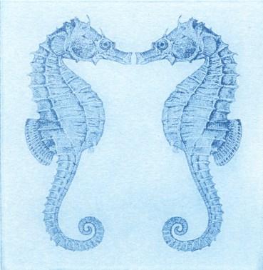 Aqua_seahorses
