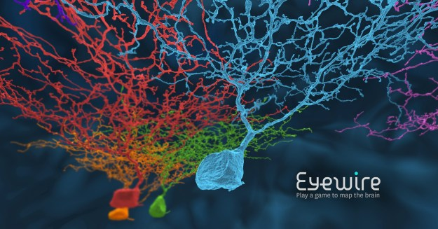 Eyewire, A Game to Map the Brain.