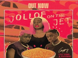 DJ Cuppy Ft. Rema & Rayvanny – Jollof On The Jet || Mp3 Download