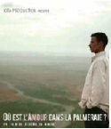 amour-palmeraie