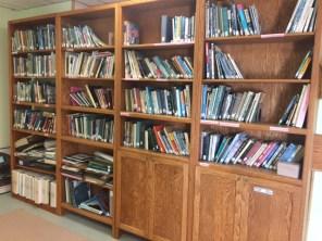 Books! Shelves!