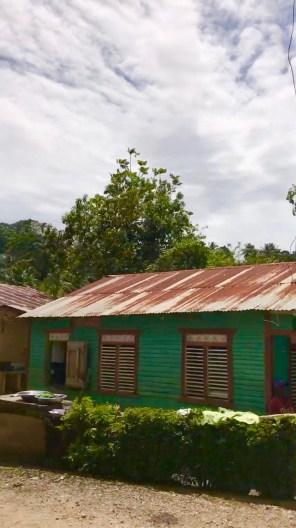 green house (1)