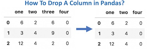 How To Drop Columns in Pandas?