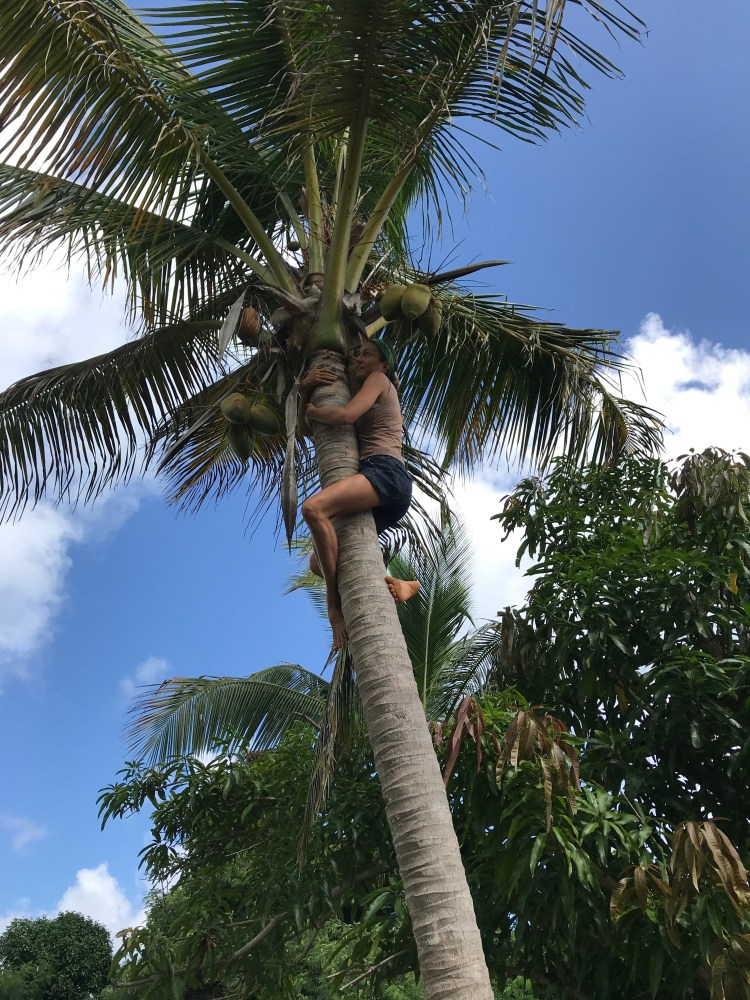 St Croix<br>Hiking/Cycling/Diving<br>Jungle Medicine<br>December 2021