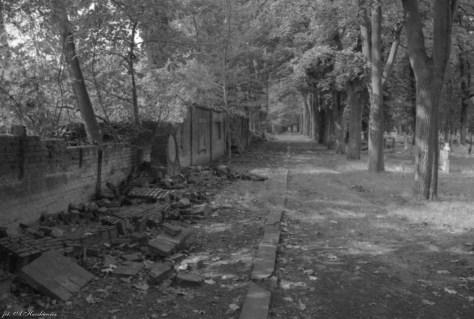 Cmentarz po powodzi w 1997 roku, fot. A.Haczkiewicz