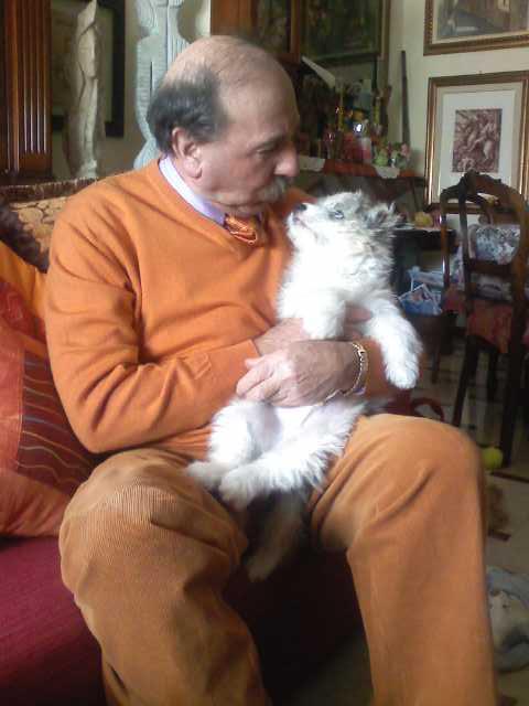 Giorgio in Arancione