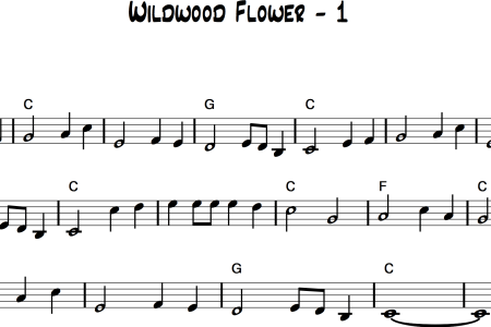how to play wildwood flower » Best White Flowers | White Flowers