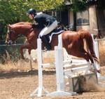 Abu Zanzabar jumping, Lydia Bowling up.