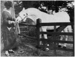 Skowronek with Lady Wentworth