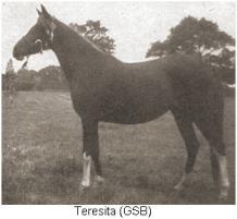Teresita (GSB)