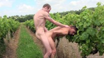 frenchlads porn