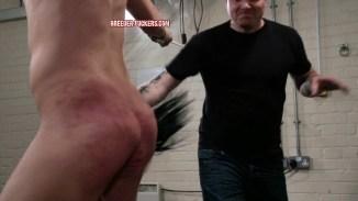 breederfuckers gay torture