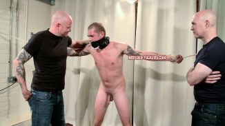 hard tied gay