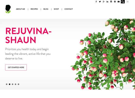 Screen capture of Nutrishaun website