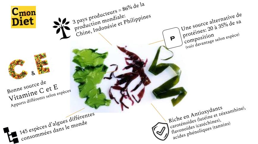 Caractéristiques des algues alimentaires: protéines, antioxydant. CmonDIet.fr