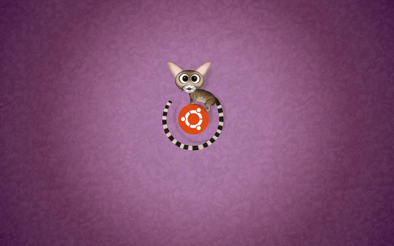Fondo de pantalla de Ubuntu Raring Ringtail con logo